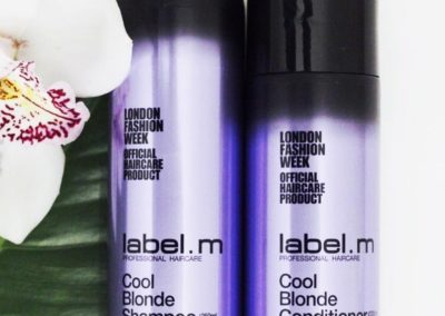 Cool Blonde Shampoo e Conditioner