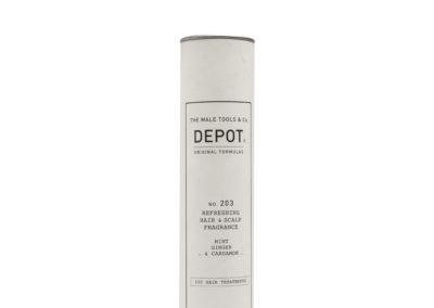 Depot_203_3