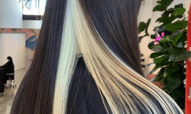 IL RITORNO DEGLI SKUNK HAIR TRA LE TENDENZE DELL'ESTATE